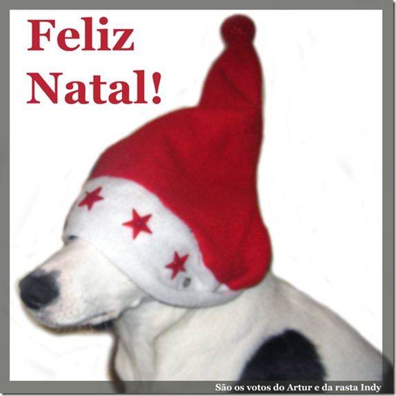 NatalIndy